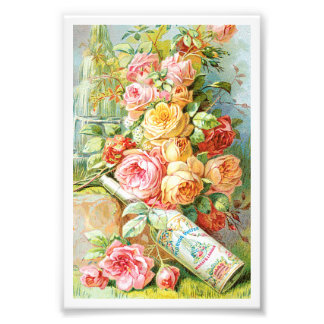 Florida Water Cologne with Cabbage Roses Photo