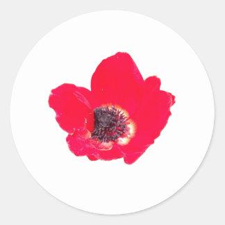 Flower24 Round Sticker