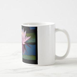 Flower 005 Pink Water lily Basic White Mug