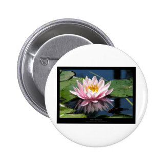 Flower 007 Water lily Pinback Button