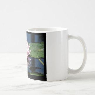 Flower 007 Water lily Basic White Mug