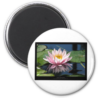 Flower 007 Water lily 6 Cm Round Magnet