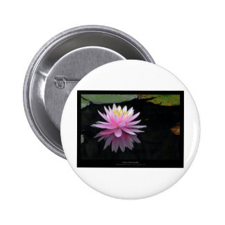 Flower 017 Pink Water Lily 6 Cm Round Badge
