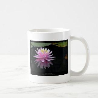 Flower 017 Pink Water Lily Basic White Mug