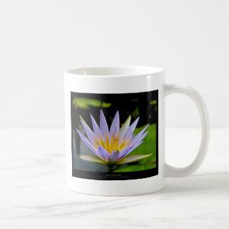 Flower 026 Blue Water Lily Basic White Mug