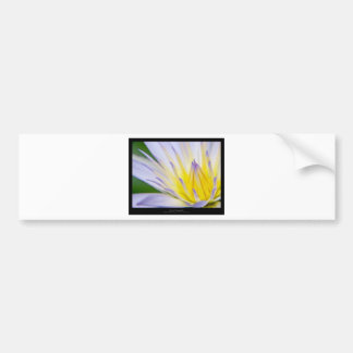 Flower 028 Blue Water Lily Bumper Sticker