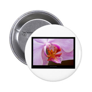 Flower 034 Pink orchid 6 Cm Round Badge