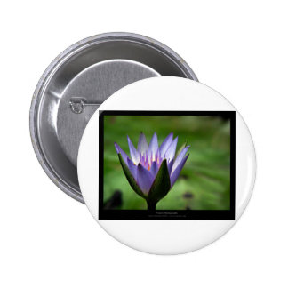 Flower 058 Blue Water Lily 6 Cm Round Badge