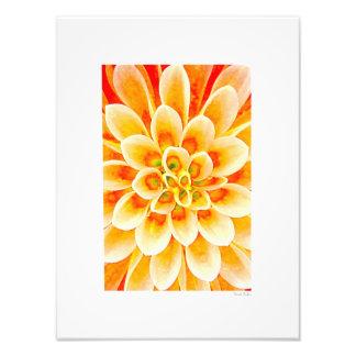 "Flower 12""x16"" photographic print"