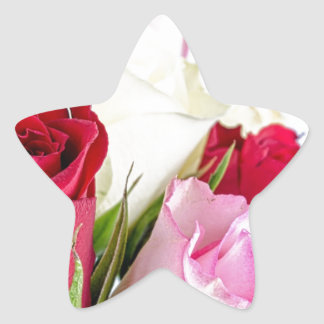 flower-316621 flower flowers rose love red pink ro star stickers