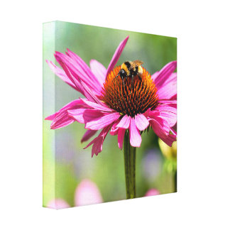 Flower and bumblebee canvas print