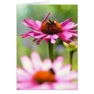 Flower and bumblebee card
