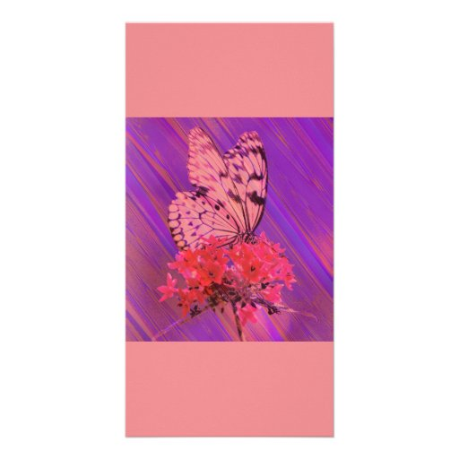 Flower and Butterfly in Pink and Purple Photo Cards
