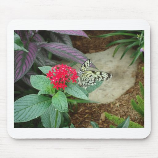Flower and butterfly mouse pad