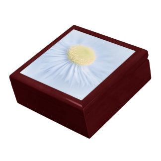 Flower Aster Large Square Gift Box