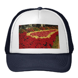 Flower bed red white and pink poinsettias mesh hats