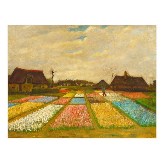 Flower Beds in Holland by van Gogh Postcard