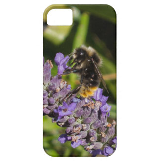 Flower-Bee Case