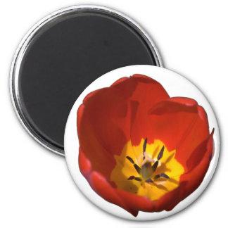 Flower bloom tulip 6 cm round magnet