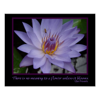 Flower Blooms Zen Proverb Purple Water Lily & Bee Poster