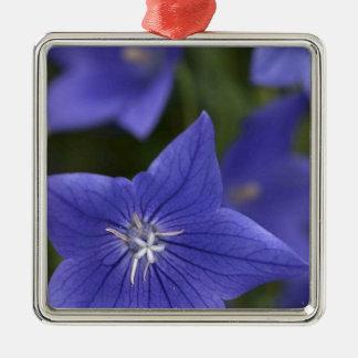 flower  blue.jpg christmas ornament