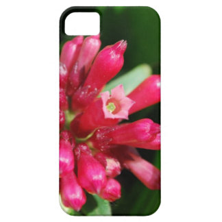 Flower - Bouquet - Pink Cover For iPhone 5/5S