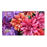Flower Bursts Pack Of Standard Business Cards