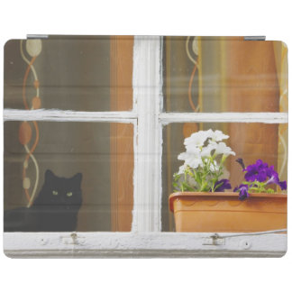 Flower by the window, Sighisoara, Romania iPad Cover