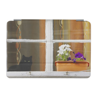 Flower by the window, Sighisoara, Romania iPad Mini Cover