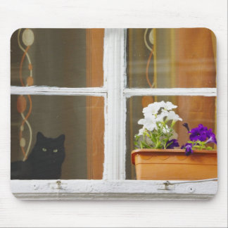 Flower by the window, Sighisoara, Romania Mouse Mat