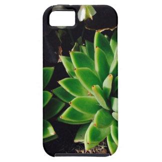 Flower Cactus iPhone 5 Case