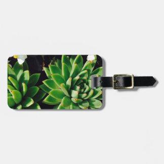 Flower Cactus Luggage Tag