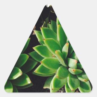 Flower Cactus Triangle Sticker