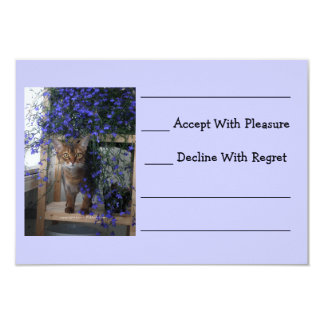 Flower Cat Personalized Announcement