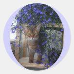 Flower Cat (oval) Classic Round Sticker
