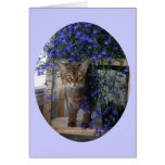 Flower Cat (oval) Greeting Card