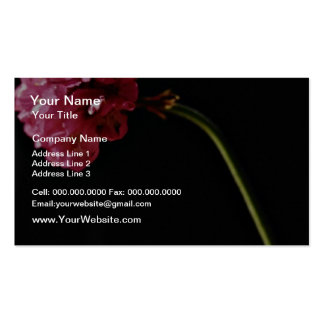 Flower close-up  flowers pack of standard business cards