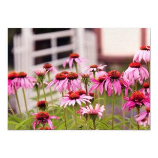 Flower - Cone Flower - In an English garden Invites