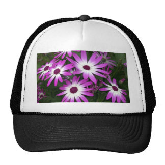 flower daisy mesh hats