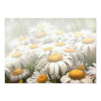 Flower - Daisy - Not quite fresh as a daisy Custom Invitations