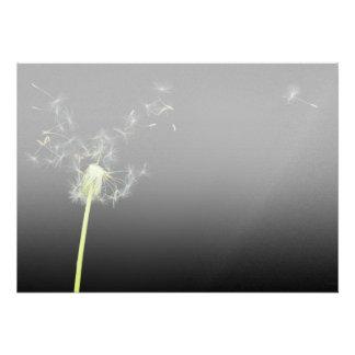 Flower - Dandelion - Gesundheit Invites