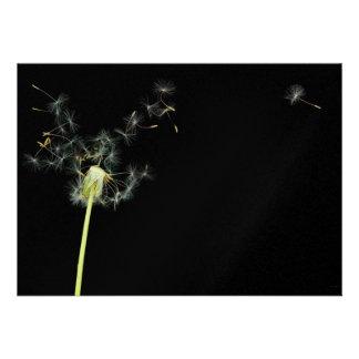 Flower - Dandelion - Gesundheit Personalized Announcements