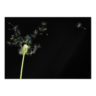 Flower - Dandelion - Gesundheit Personalized Announcements