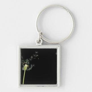 Flower - Dandelion - Gesundheit Key Chains