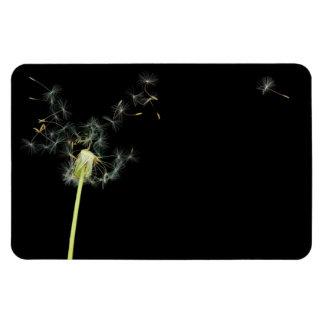 Flower - Dandelion - Gesundheit Magnet