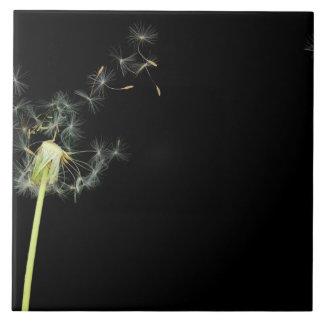 Flower - Dandelion - Gesundheit Tiles
