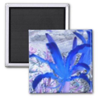 Flower Daze Refrigerator Magnet