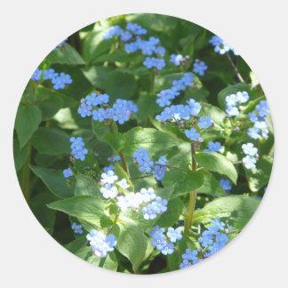 flower,forget-me-not round sticker