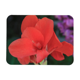 Flower found in the gardens of the D. Carlos I Rectangular Photo Magnet