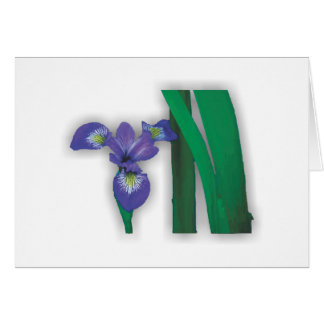 Flower Garden - Blue Flag Iris Card